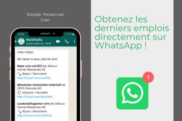 WhatsApp_Email_Franz
